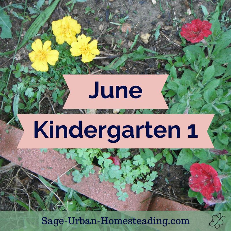 June kindergarten 1