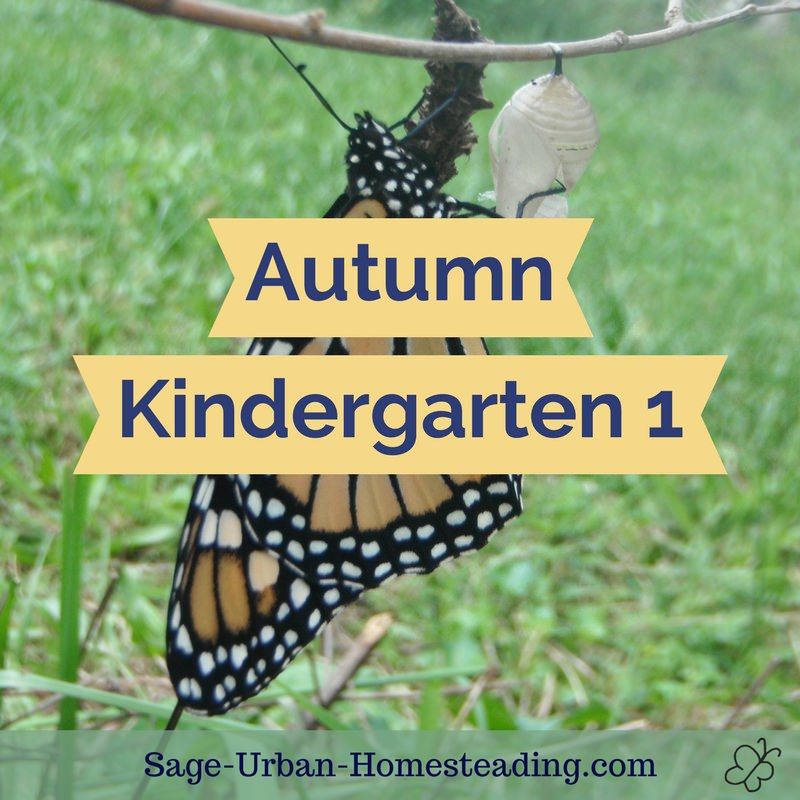 autumn kindergarten 1