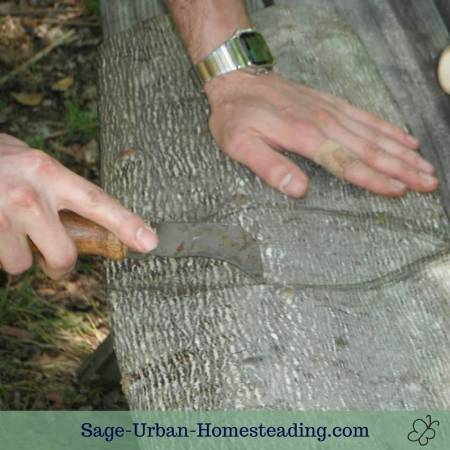 scoring bark for the basket bottom folds