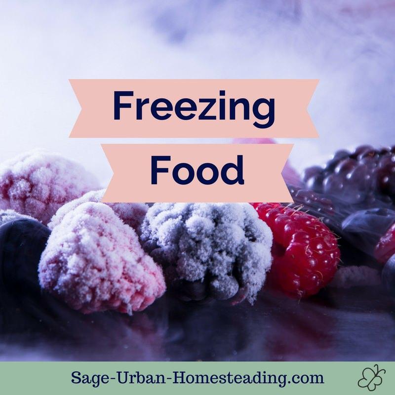 freezing food