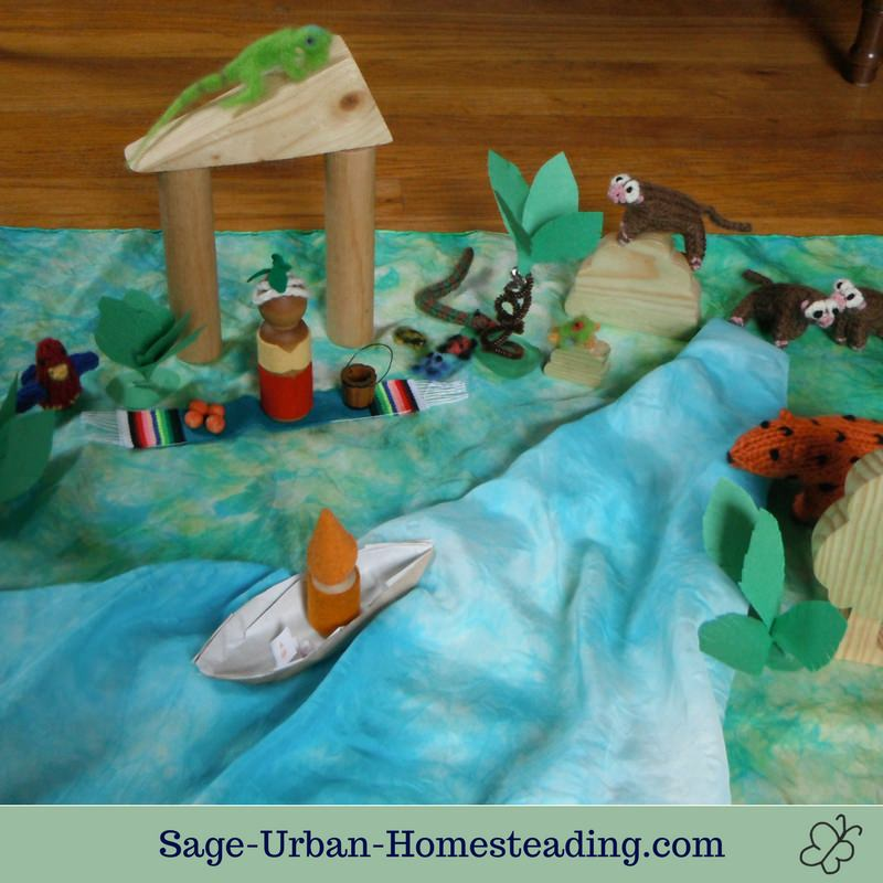 tropical place with Amazon rainforest animals