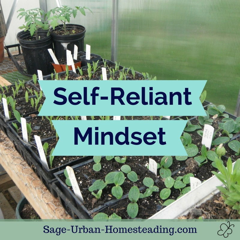 self-reliant mindset