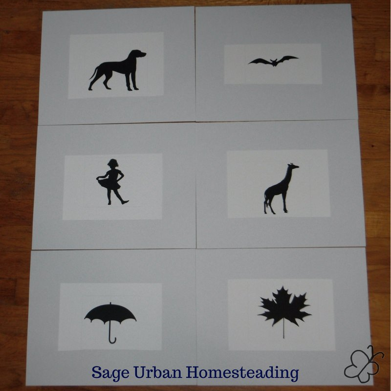Snapp reading silhouette cards