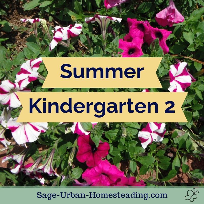 summer kindergarten 2