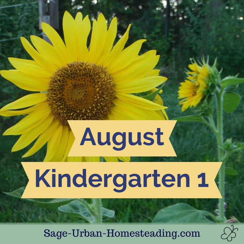 August kindergarten 1