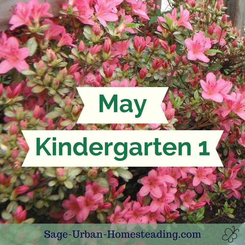 May kindergarten 1