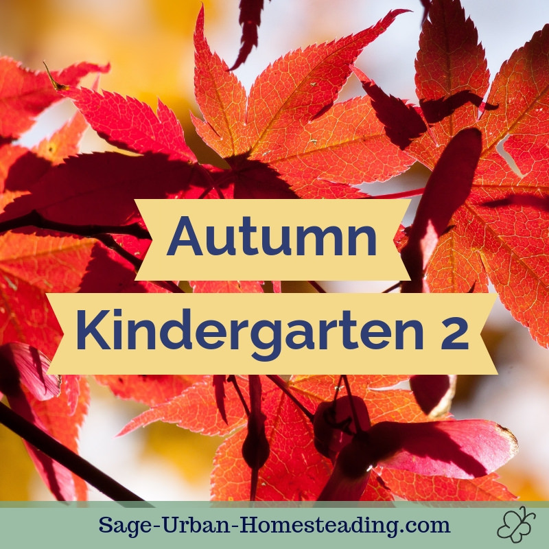 autumn kindergarten 1