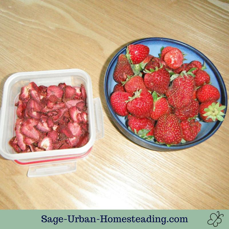 dehydrated strawberries and fresh strawberries