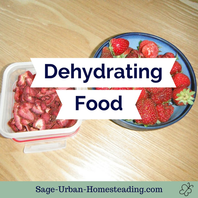 dehydrating food