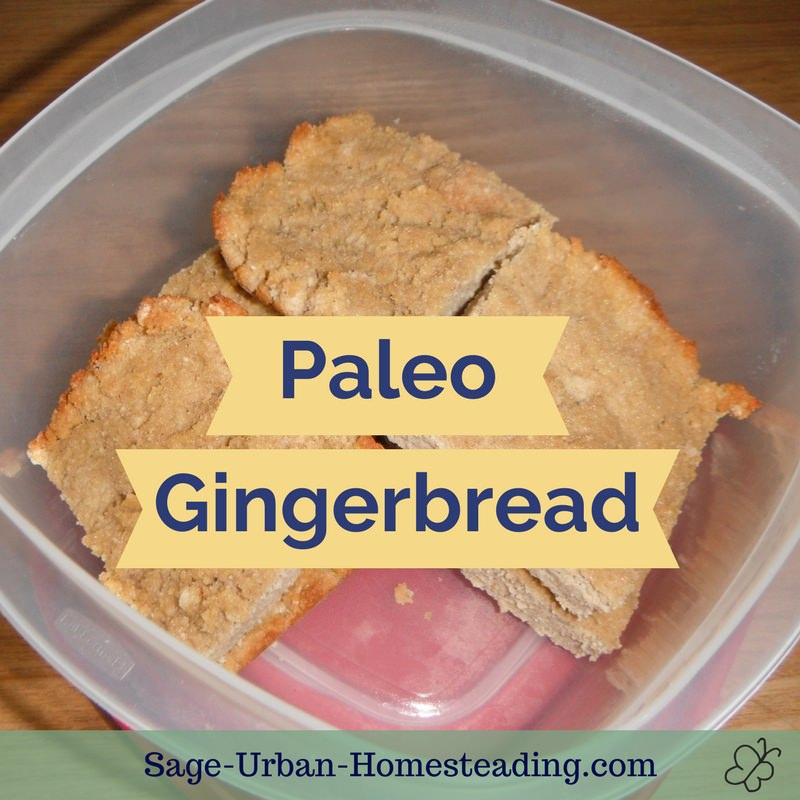 paleo gingerbread