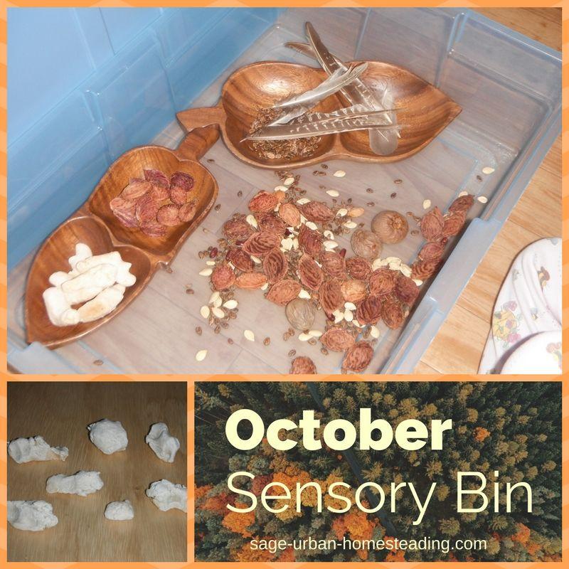 October sensory bin