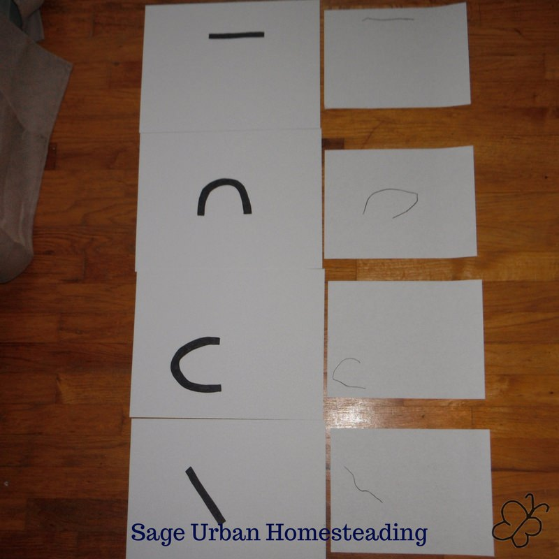 Snapp reading line cards