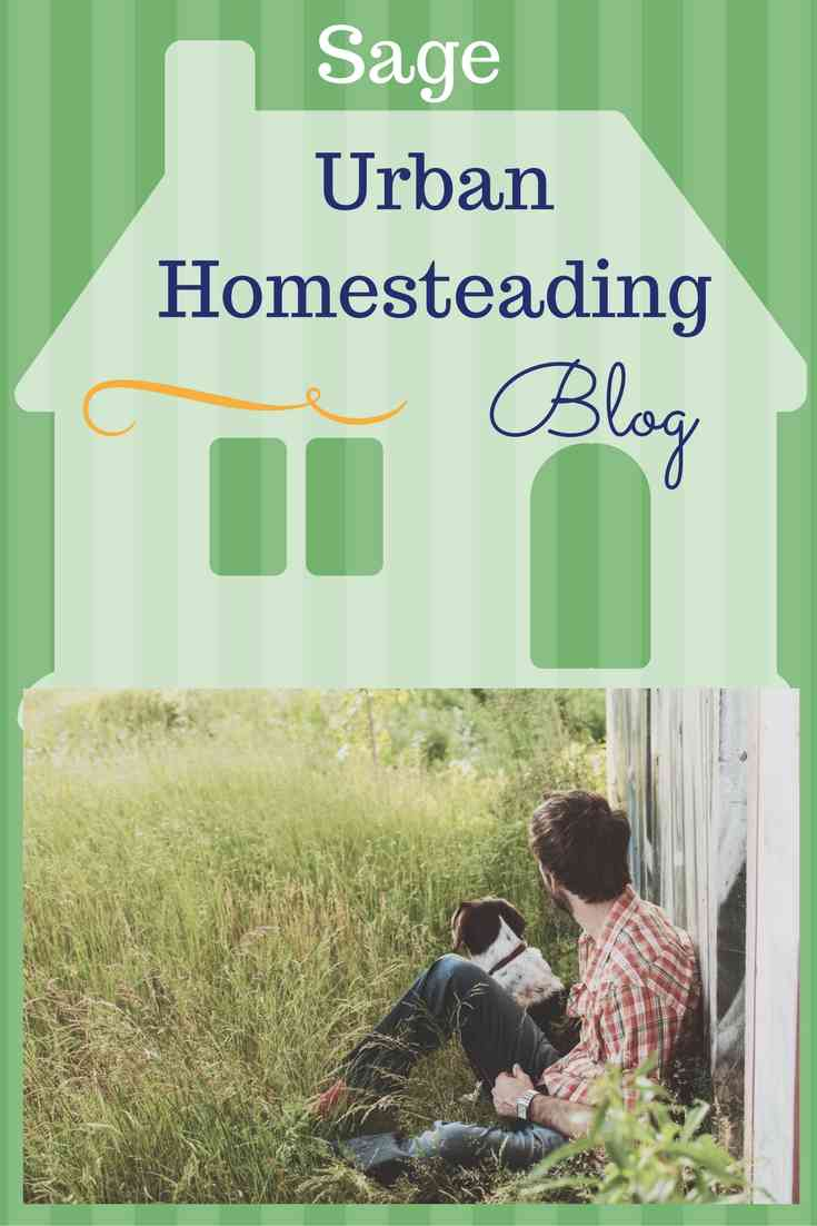 sage urban homesteading blog