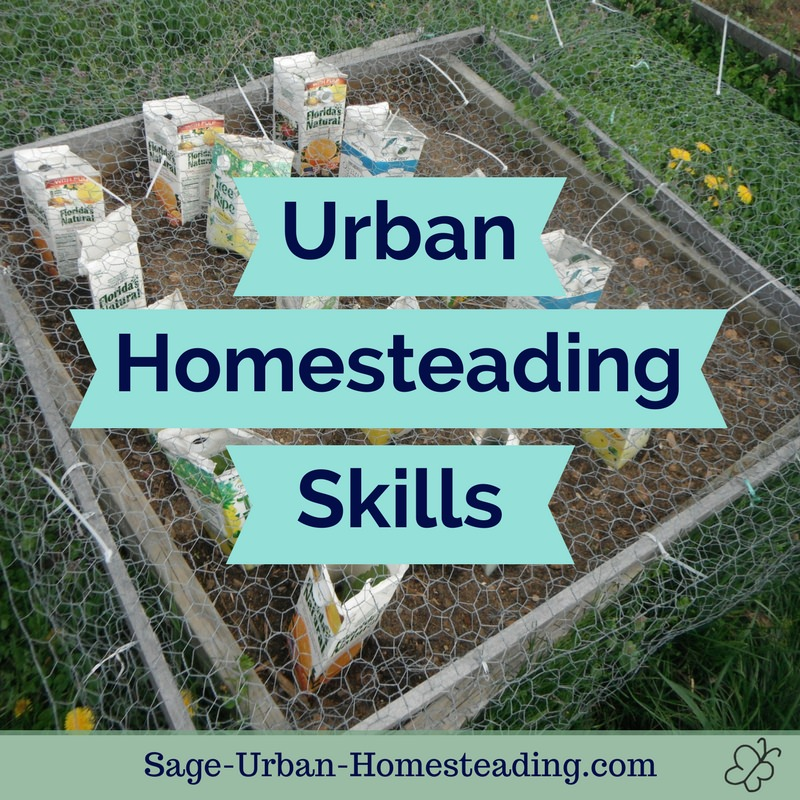 urban homesteading skills