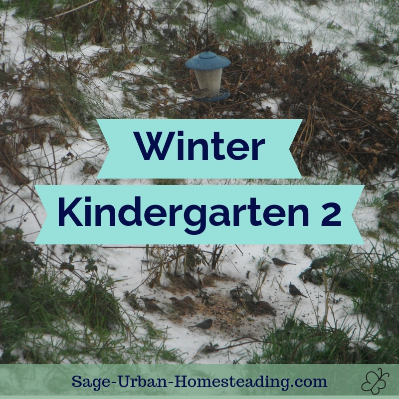 winter kindergarten 2