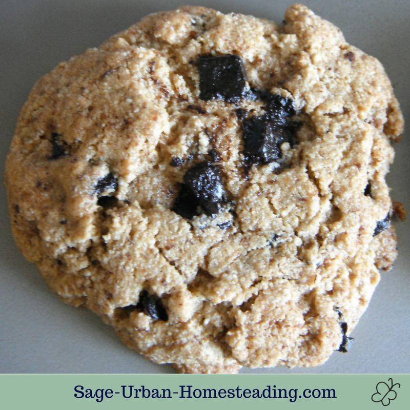 gluten-free carob chip cookie