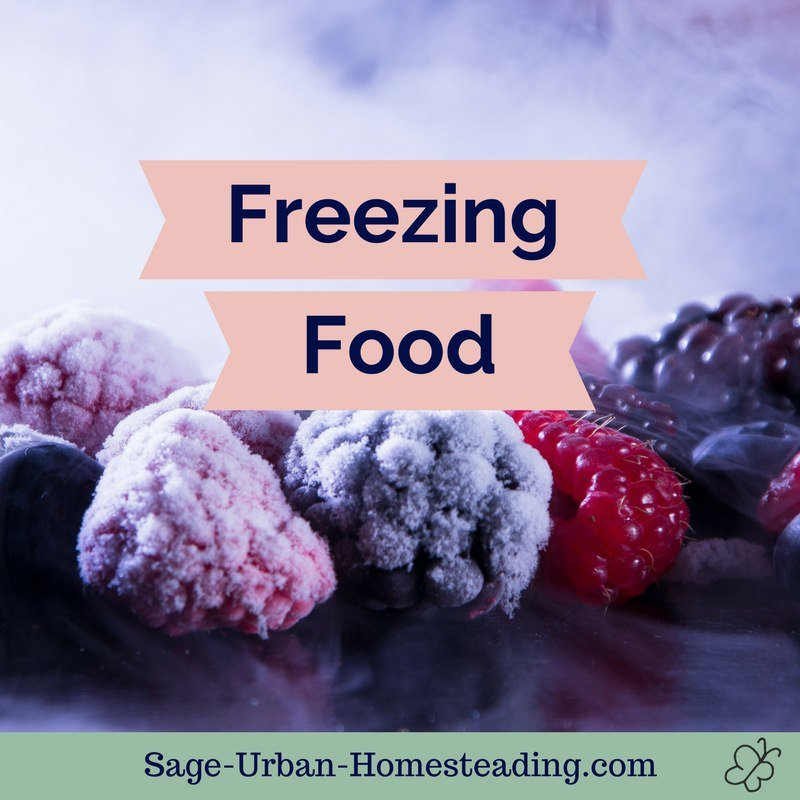 freezing food