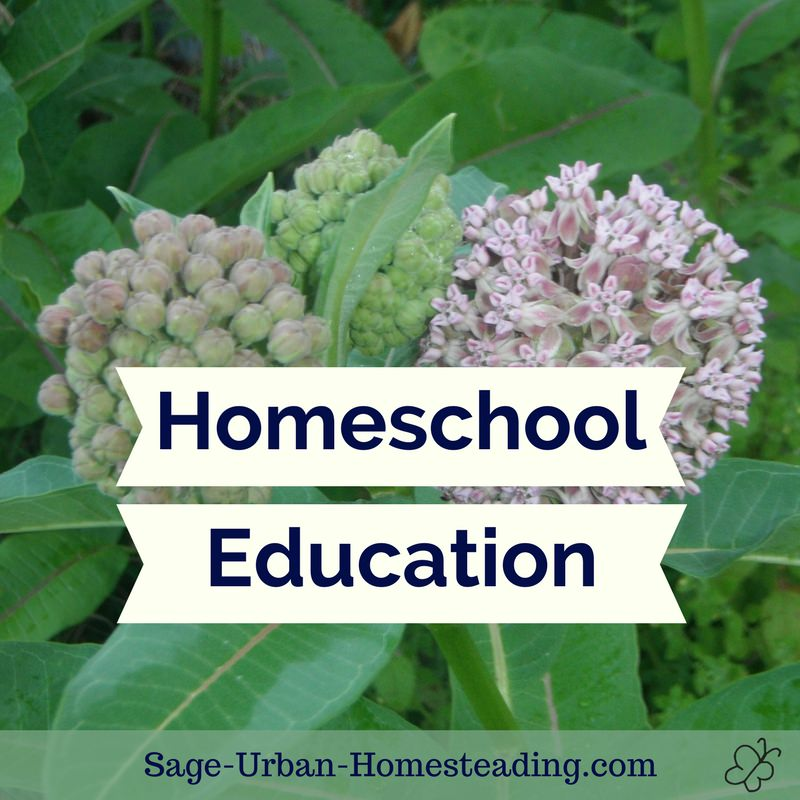 homeschool education