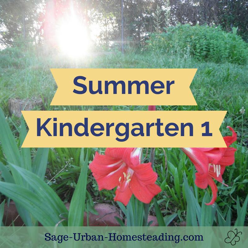 summer kindergarten 1