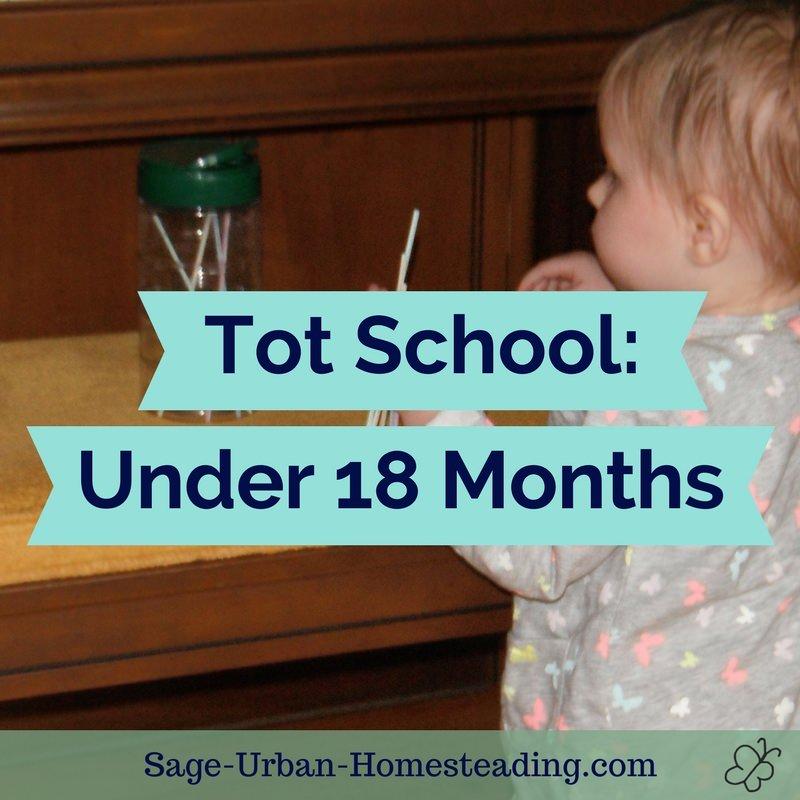 tot school: under 18 months